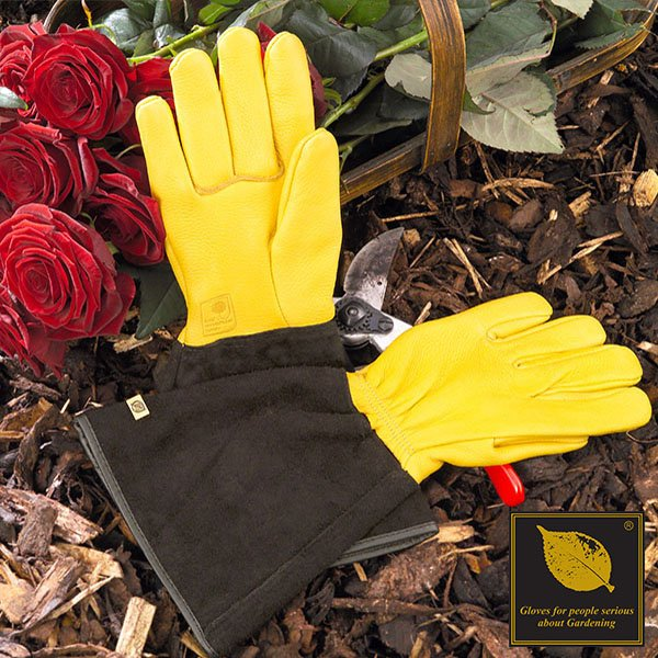 Tough Tough Glove