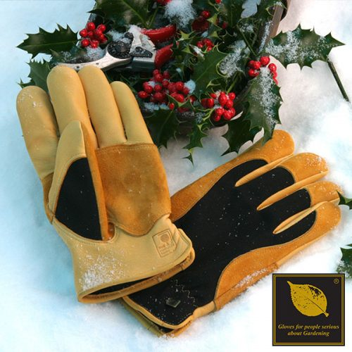 Winter Touch Glove